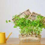 銀行にお金を預けておくとお金が増えるのはなぜ?
