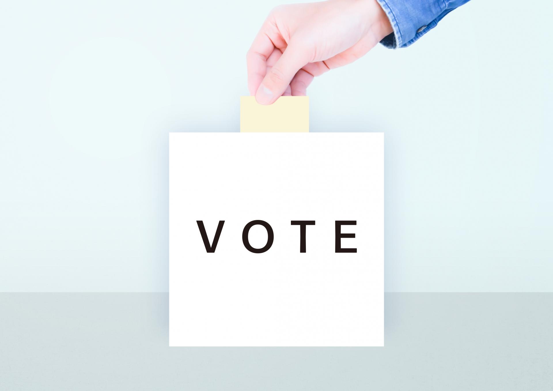 どうしたら選挙で政治家を正しく選べるの?
